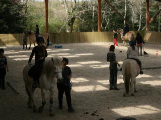 Initiation à l'équitation lors d'un séjour adolescents