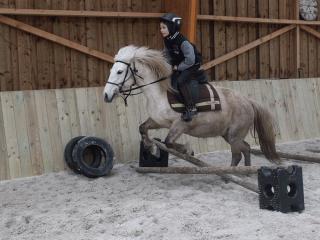 Séance d'obstacle avec un jeune cavalier.